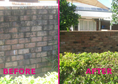 Brick Fence Cleaning